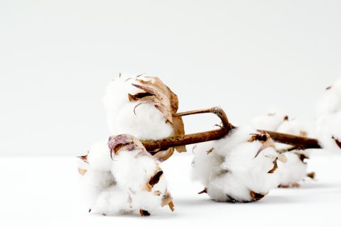 Where do textiles come from? - Venubi Marketplace